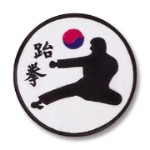 Jump Kick Patch