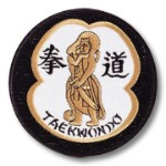 Tae Kwon Do Warrior Patch