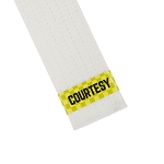 Courtesy Martial Arts Belt Stripe
